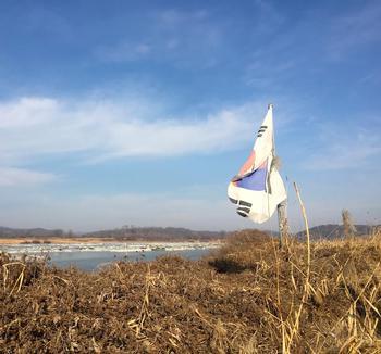 Seoul International School Explores Korean Demilitarized Zone and its Biodiversity