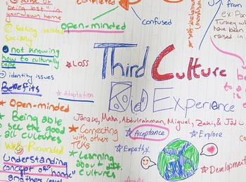 Themed Theater: Expressions of the Third-Culture Experience