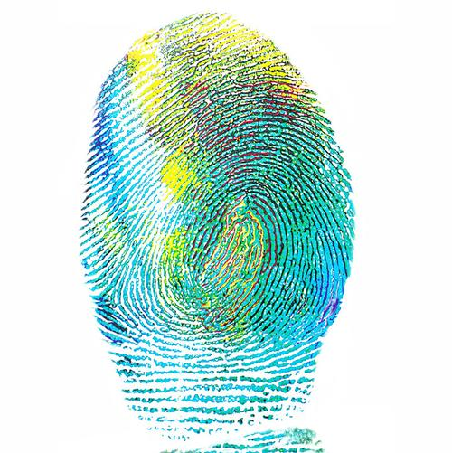 The Wellbeing Fingerprint