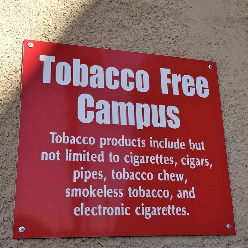Nicotine Addiction and The Teenage Brain